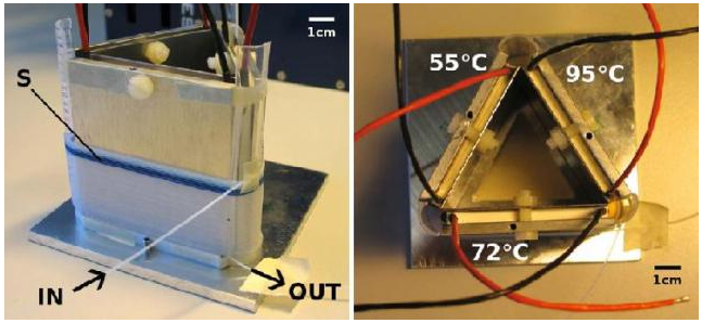 experiment setup pathogenic bacteria